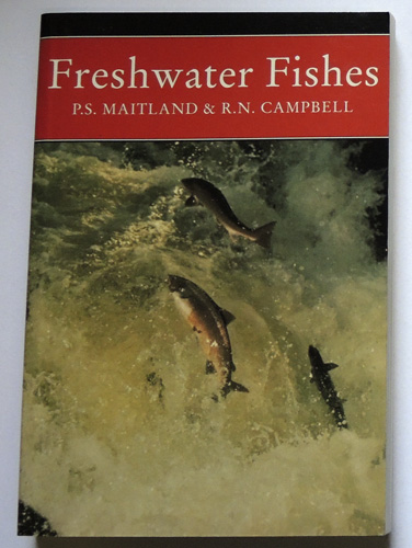 Image for The New Naturalist: Freshwater Fishes of the British Isles