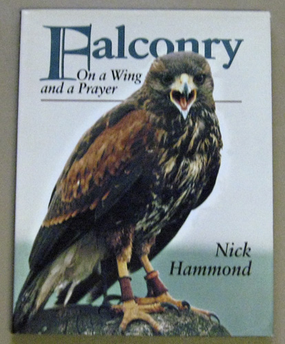 Image for Falconry: On a Wing and a Prayer