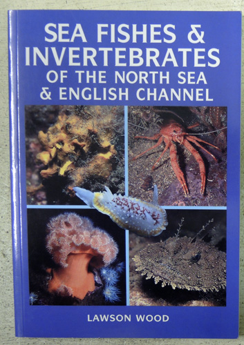 Image for Sea Fishes and Invertebrates of the North Sea and English Channel