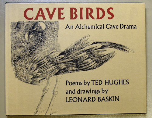 Image for Cave Birds: An Alchemical Cave Drama