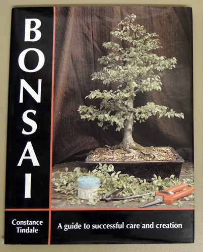 Image for Bonsai: A Guide to Successful Care and Creation