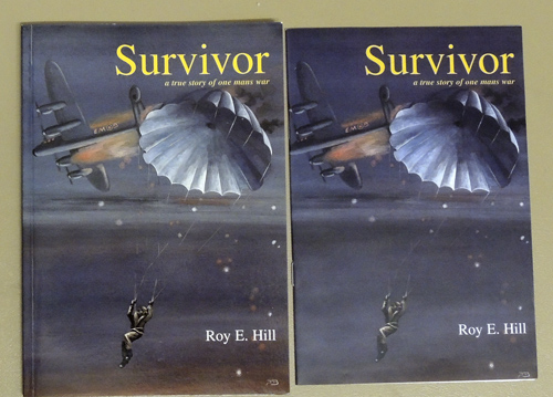 Image for Survivor: A True Story of One Mans War