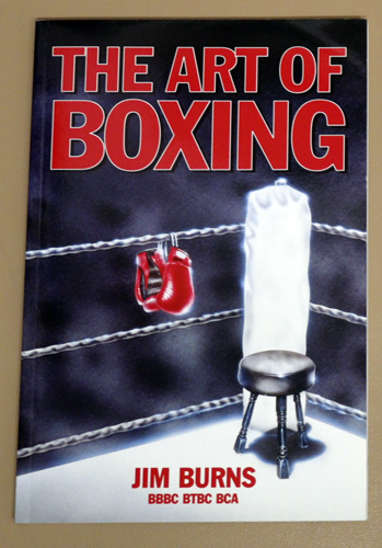 Image for The Art of Boxing