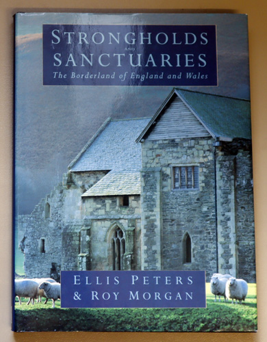 Image for Strongholds and Sanctuaries: The Borderland of England and Wales