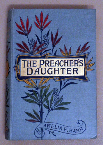 Image for The Preacher's Daughter: A Domestic Romance