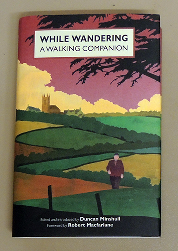 Image for While Wandering: A Walking Companion