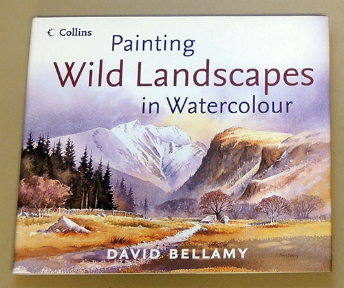 Image for Painting Wild Landscapes in Watercolour