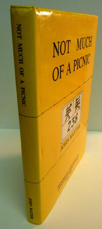 Image for Not Much of a Picnic: Memoirs of a Conscript and Japanese Prisoner of War 1941-1945